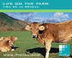 Life on the farm (CD151)