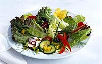 Plate, Mixed salad