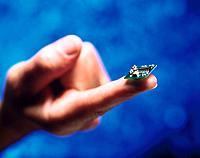 Finger Chip Platine Mikrochip