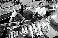 Fishermen selling their captures. Vero Peco market. Belem. Brazil