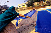 Washerwomen drying cloths at the ghats of Ganges River. Varanasi. India