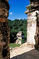 Temple of the Sun. Palenque. Mexico