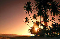Sunset at Pigeont Point. Tobago