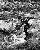 Mid adult man fly fishing in a stream