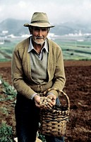 Man in a Potato Field Holding Potatoes