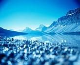 Bow Lake. Banff National Park. Alberta. Canada