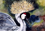Africa, Kenya, Safari, Crested Crane by John Bunker, watercolor, 1996