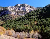 Mountains. Cuenca province. Spain