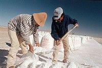 Salt extraction. Salar Grande. Jujuy province. Argentina