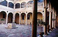Palacio de los Guzmanes, cloister. León. Castilla y León. Spain