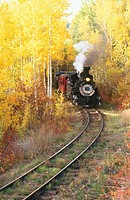 Railroad steam train winding through fall aspens near Chama. Cumbres & Toltec Scenic Railroad. New Mexico. USA