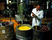 Orange juice production. Technician reconstituting orange juice from concentrate. Concentrate is made by evaporation of the fresh juice. By removing m...