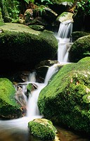 Small waterfall near the village of Fusio. Maggia Valley (Val Maggia). Tessin. Switzerland
