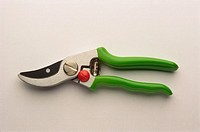 Pruning shears