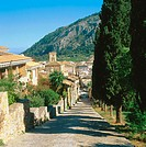 Pollensa. Majorca. Balearic Islands. Spain