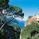 Serra de Tramuntana. Majorca. Balearic Islands. Spain