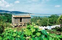 Horreo (typical barn). Laxe. La Coruña province. Galicia. Spain