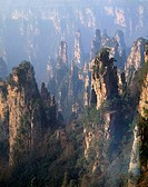 Mt. Tianzi. China