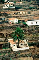 Gran Rey Valley. La Gomera Island. Canary Islands. Spain