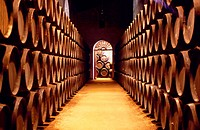 Barrels in Sanchez Romate wine cellar. Jerez de la Frontera. Cadiz province. Andalusia. Spain