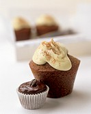 Cappuccino muffin and espresso muffin