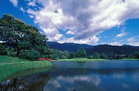 Taiping Lake Gardens, Perak, Malaysia