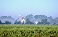 Agriculture field and farm building in the distance. Harvard. Illinois. USA