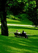 People sitting on bench in green grass