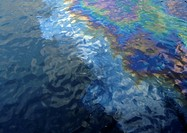 Oil on surface of water