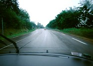 Road through woods, view from car