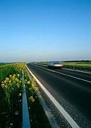 France, Picardy, rapeseed growing on side of rural road with car, blurred motion