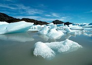Chile, Patagonia, Torres del Paine National Park, glacial ice floating on water