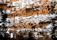 Black and white splatters on brown surface