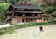 China, Guangxi Autonomous Region, man in rice paddy, old house on bank