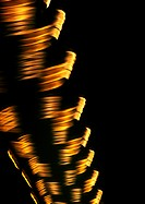 Spiraling light effect, yellows