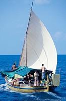 Traditional Dhoni (maldivian boat). North Male Atoll. Maldives