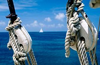 Sailboat. Saint Vincent and the Grenadines. West Indies. Caribbean