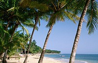 Beach. Las Terrenas. Samana Peninsula. Dominican Republic. West Indies. Caribbean