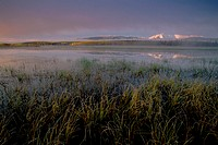 10643108, Alaska, highway, dusk, twilight, smoke, frost, grass, autumn, autumn colors, Horizontal, indian summer, cold, cold
