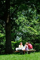 Picnic. Mill Mountain. Roanoke. Virginia. USA