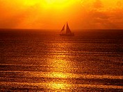 Sailing boat in sunset