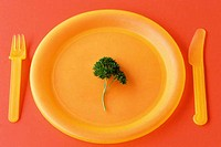 Sprig of parsley on a plate