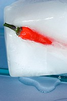 Chili pepper in ice
