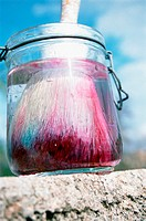 Paintbrush in jar