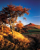 Roseberry topping, Yorkshire, England, Great Britain