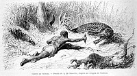 Caiman hunt, drawing by A. De Neuville. Engraving from 'Le tour du monde'