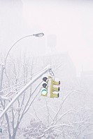 Snow covered traffic light on green (thumbnail)