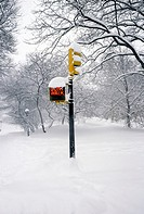 Traffic light showing 'don't walk' sign in winter landscape (thumbnail)