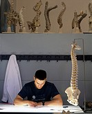 Anatomical drawing school. Student using a model backbone to learn the art of drawing anatomically correct pictures.  The use and  study of accurate a...