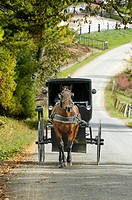 Amish lifestyle. Millersburg. Ohio. USA